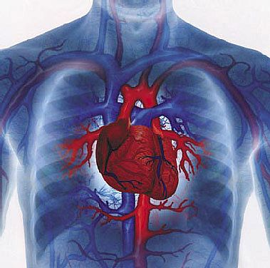 heart disease social security disability